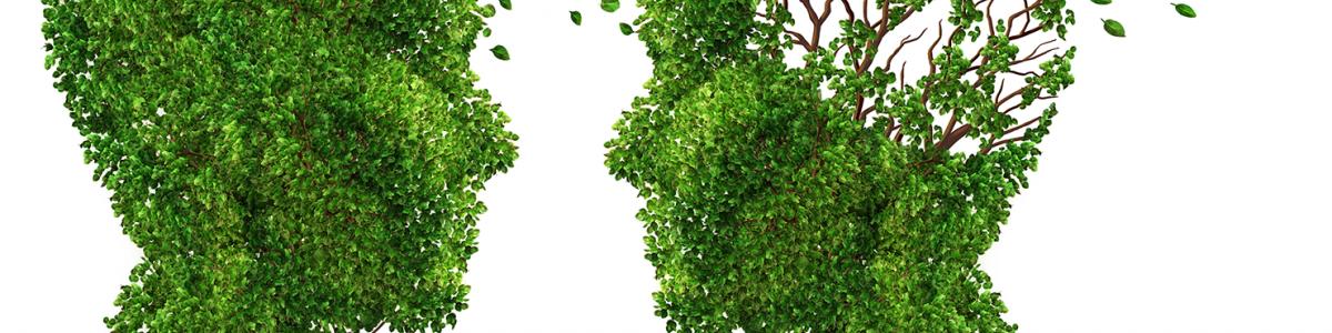 Grafik af buske formet som ansigter vendt mod hinanden